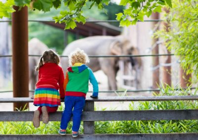Case Study: Beloved Zoo Reopening with New Safety Measures Post-Covid Surpasses CPA Goal By 91% With Bidtellect