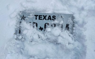 Texas Weather Crisis, Holiday 2020 Review, trust.txt, and more. This Week in Digital Advertising: February 18th, 2021