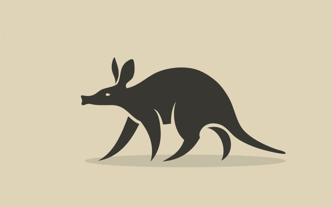 This Week's Newsletter: What the Heck is AARDvark?